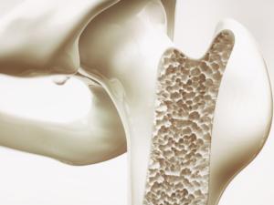 Associazione Americana endocrinologi solleva dubbi su necessità integratori per salute ossa