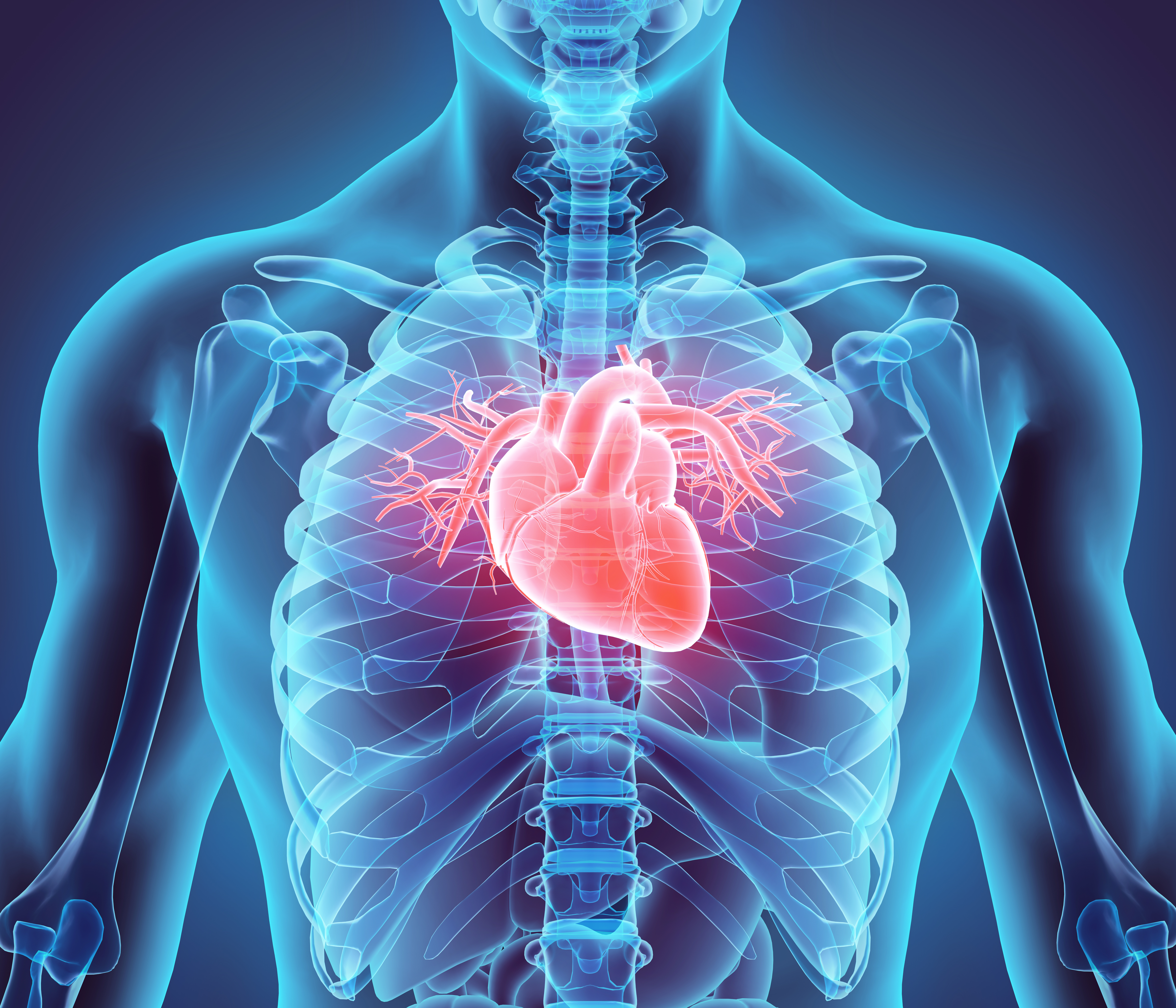 PUFA N-3 e malattie cardiovascolari CVD.