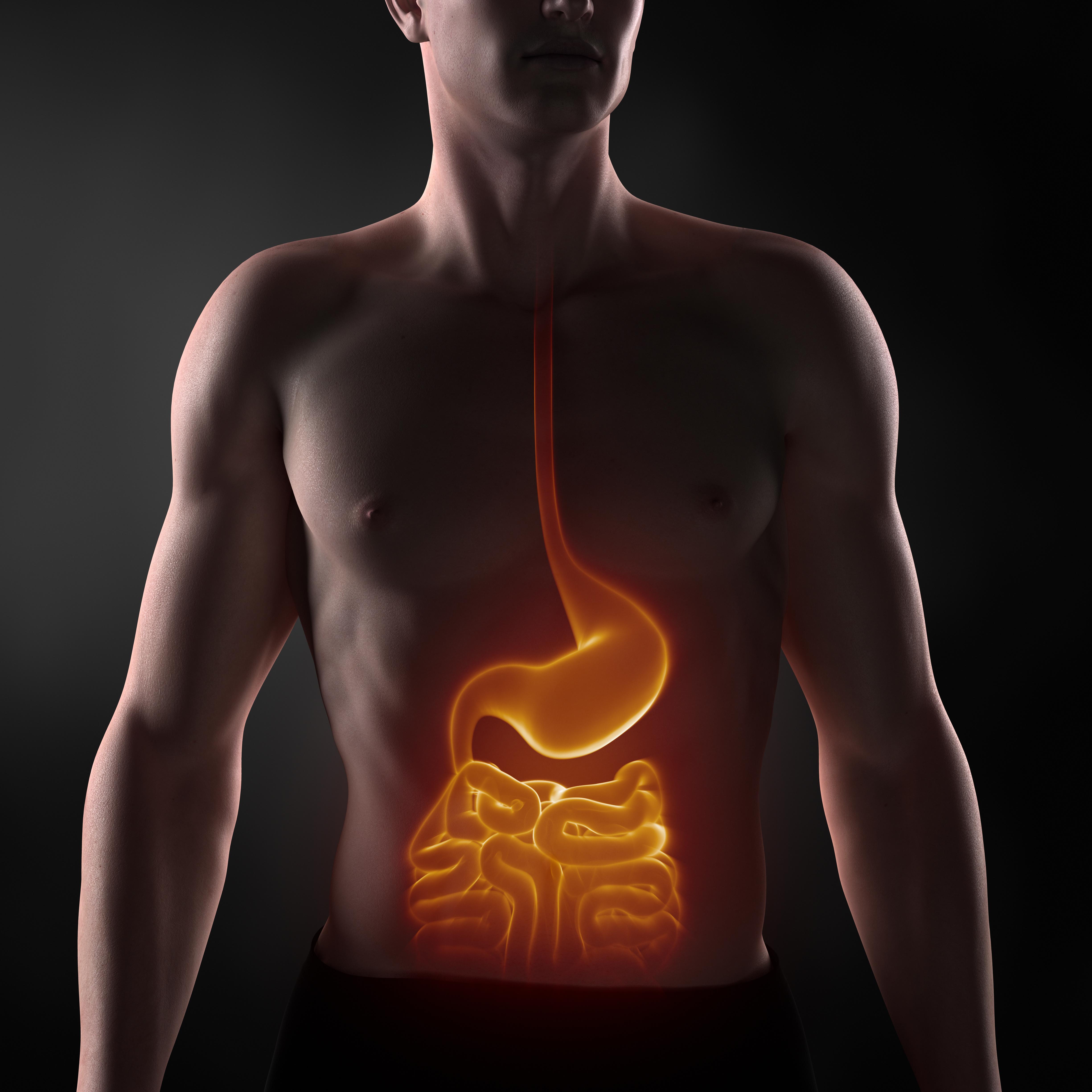 Dieta FODMAP nella cura di IBS e IBD