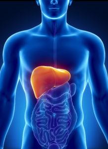Dismetabolismi e nutraceutici