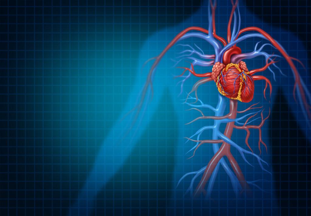 Integratori vitaminici e malattie CV